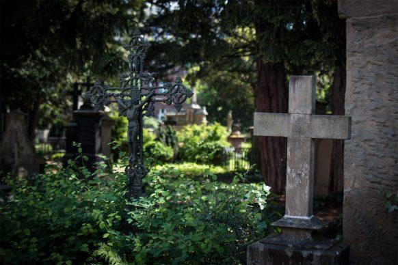 Blick über den alten Friedhof in Bonn mit zwei Kreuzen