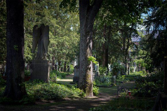 Blick über den alten Friedhof in Bonn, großer Friedhofsengel von hinten