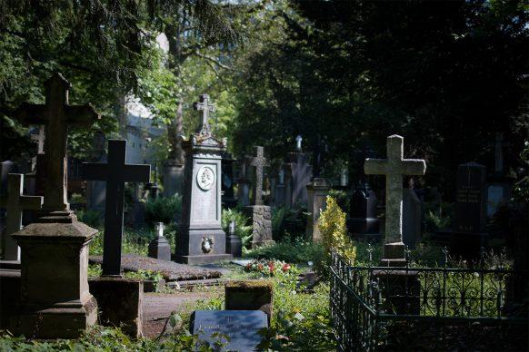 Blick über den alten Friedhof in Bonn mit vielen Kreuzen
