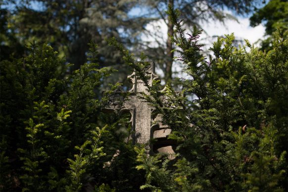 Steinernes Kreuz schaut hinter Tannenzweigen hervor